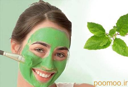 ماسک نعنا برای پاکسازی پوست, خواص نعناع برای پوست صورت